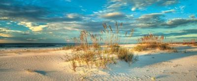 Beach Dream II by Doug Cavanah