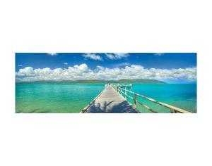 Palm Bay Paradise by Doug Cavanah