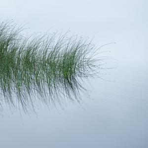 Hebridean Haiku by Doug Chinnery