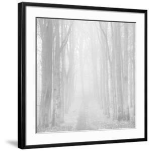 Morning Mists IIi by Doug Chinnery