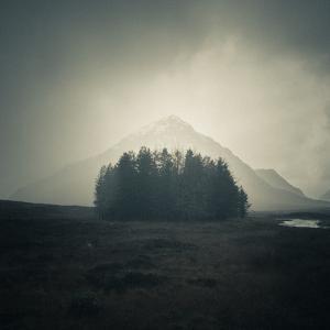 Wild Scotland by Doug Chinnery