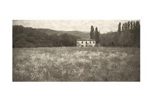 Tuscan Farm - Sepia by Doug Landreth