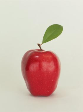 Apple with Leaf by Doug Mazell