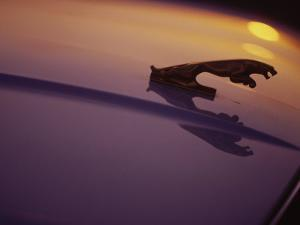 Hood Ornament of Jaguar with Light Reflection by Doug Mazell