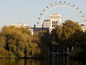 London Eye from Green Park by Doug McKinlay