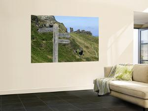 Signposts, Tintagel Castle by Doug McKinlay
