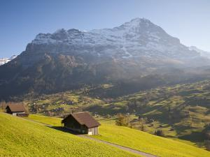 Alpine Meadow, Eiger and Grindelwald, Berner Oberland, Switzerland by Doug Pearson