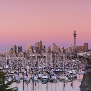 Auckland City Skyline & Westhaven Marina by Doug Pearson