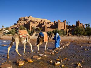 Camel Driver, Ait Benhaddou, Atlas Mountains, Morocco, Mr by Doug Pearson