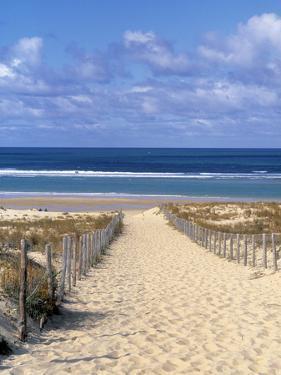 Cape Ferret, Basin d'Arcachon, Gironde, Aquitaine, France by Doug Pearson