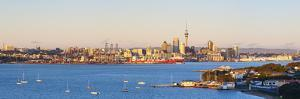 Elevated View over Devenport Towards Cbd Illuminated at Sunrise, Auckland, New Zealand by Doug Pearson