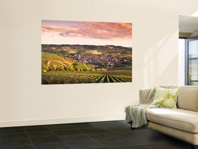 Irancy, Chablis, Burgundy, France by Doug Pearson