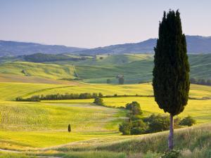 Landscale Near Pienza, Val D' Orcia, Tuscany, Italy by Doug Pearson
