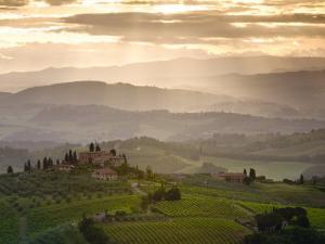 Landscape, San Gimignano, Tuscany, Italy by Doug Pearson