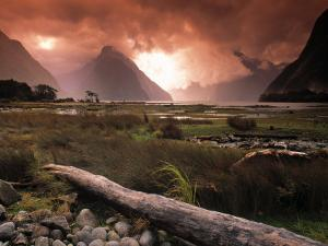 Milford Sound, Fiordland, South Island, New Zealand by Doug Pearson