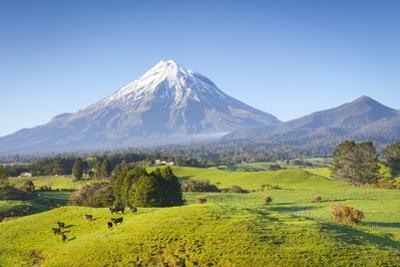 Picturesque Mount Taranaki (Egmont) and Rural Landscape, Taranaki, North Island, New Zealand by Doug Pearson