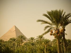 Pyramids at Giza, Cairo, Egypt by Doug Pearson