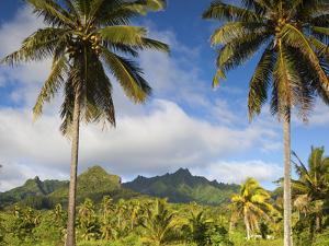 Rarotonga, Cook Islands, South Pacific by Doug Pearson