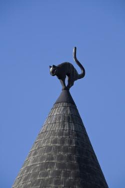 The Cats House, Riga, Latvia, Europe by Doug Pearson