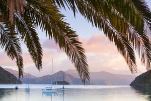 Yachts Anchored on the Idyllic Queen Charlotte Sound, Marlborough Sounds, South Island, New Zealand by Doug Pearson