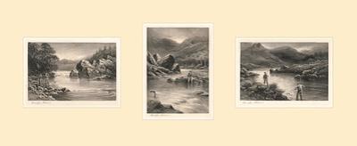 The Elusive Salmon Triptych