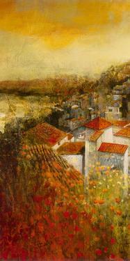 Alioa Fields II by Douglas