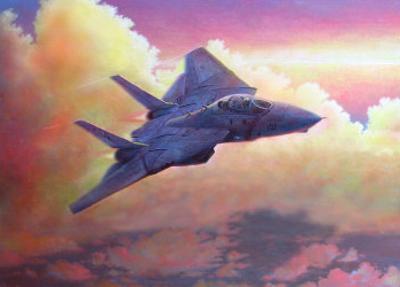 F-14A Tomcat by Douglas Castleman