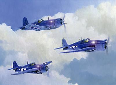Navy Fighters of WWII by Douglas Castleman