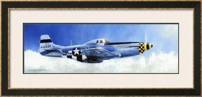 P-51D Mustang by Douglas Castleman
