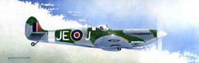 Spitfire MK9 by Douglas Castleman