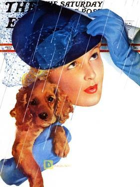 """Woman in Rain with Cocker,"" Saturday Evening Post Cover, April 8, 1939 by Douglas Crockwell"