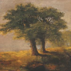 Eden XII by Douglas