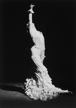 The Dancer by Douglas Kent Hall