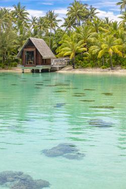 Clear blue tropical waters, Bora Bora, French Polynesia by Douglas Peebles