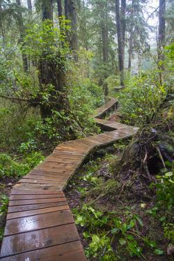 Combers Beach Trail, Pacific Rim National Park, Vancouver Island, British Columbia, Canada by Douglas Peebles