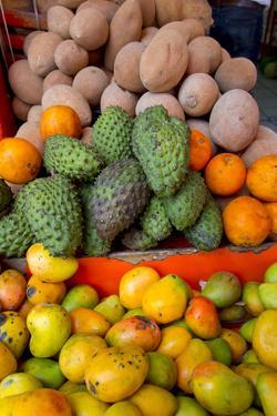 Fruit and Vegetable Market, El Pitillal, Puerto Vallarta, Mexico by Douglas Peebles