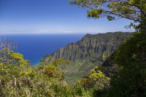 Kalalau Lookout, Kokee State Park, Kauai, Hawaii, USA by Douglas Peebles