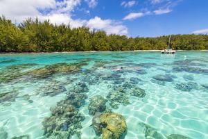 Motu Fareone, Tiahura, Moorea, French Polynesia by Douglas Peebles