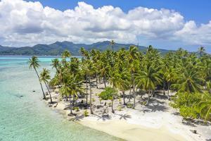 Motu Mahana, Tahaa, Society Islands, French Polynesia, South Pacific by Douglas Peebles