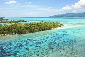 Motu, Tahaa, Society Islands, French Polynesia, South Pacific. by Douglas Peebles