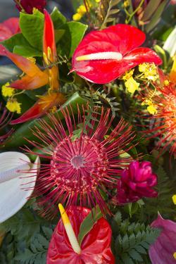North Kohala Kamehameha Day Celebration, Hawi, Big Island, Hawaii, USA by Douglas Peebles