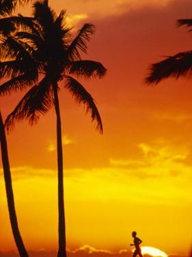 Runner at Sunset by Douglas Peebles
