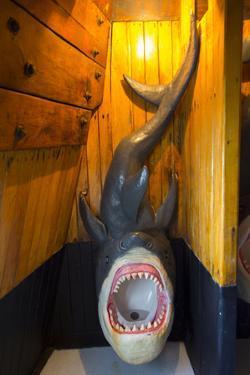 Shark Urinal, Marigalante Pirate Ship Tour, Puerto Vallarta, Mexico by Douglas Peebles
