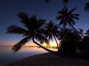 Sunrise, Les Tipaniers Hotel, Tiahura, Moorea, French Polynesia, South Pacific by Douglas Peebles