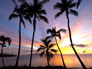 Sunset, Napili Bay, Maui, Hawaii by Douglas Peebles
