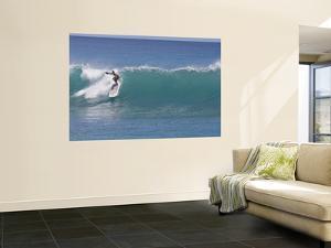 Surfing at Waikiki, Honolulu, Hawaii, USA by Douglas Peebles
