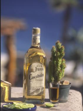 Tequila, Cabo San Lucas, Baja California, Mexico by Douglas Peebles