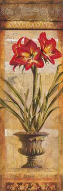 Rojo Botanical III by Douglas