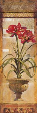Rojo Botanical IV by Douglas