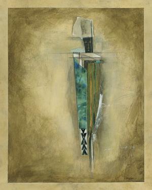 Shaman Of The Rain by Douglas